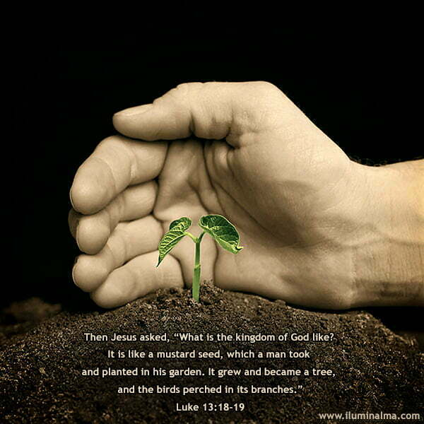 Luke 13:18-19